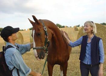 Empowerment mit einer Pferdestärke. Mit pferdegestütztem Coaching aus der Burnout-Falle